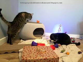 kocie zabawki, zabawki dla kota, łóżko dla kota, prezenty