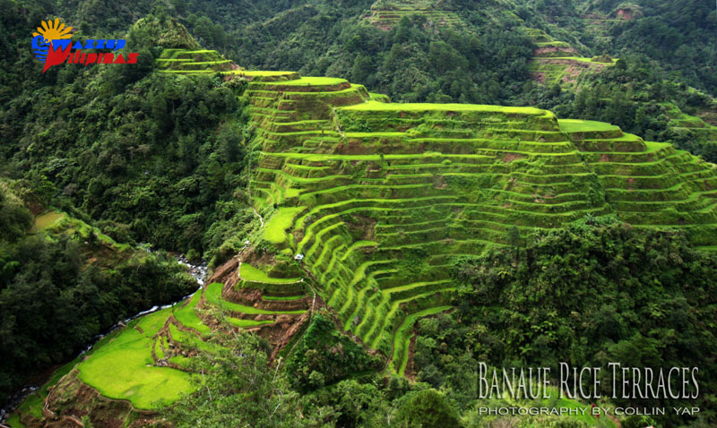 camera flying drone with Banaue Rice Terraces on Camera Drone Buyers Guide moreover Banaue Rice Terraces additionally Drone additionally Cars In Clouds Photos Of Burnouts further Accessories Mavic Pro Drone.