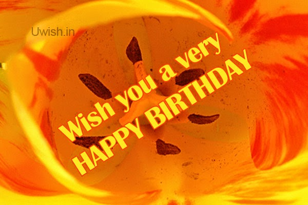 Happy Birthday e greetings and wishes with yellow golden orange background.