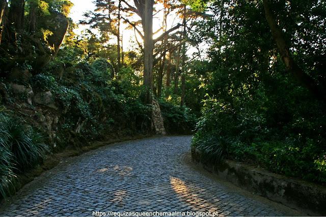 Parque do Palácio da Pena, Sintra
