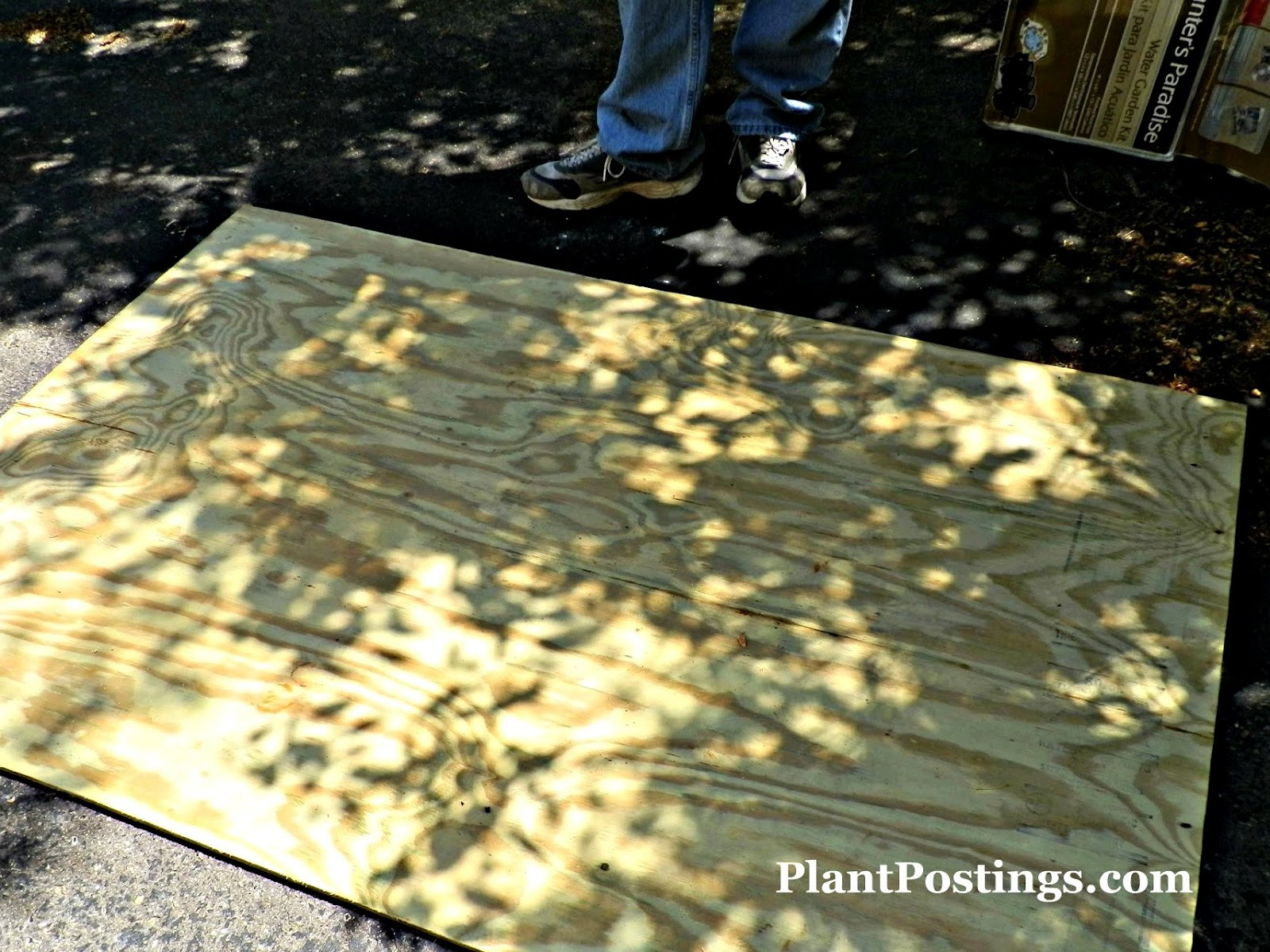 Plantpostings how to make an above ground pond for Fish pond base