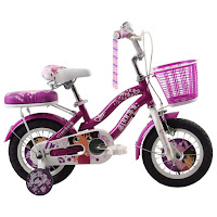 sepeda anak pacific astina