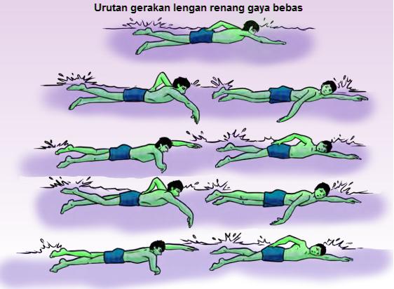 Gambar  Variasi gerakan lengan renang gaya bebas