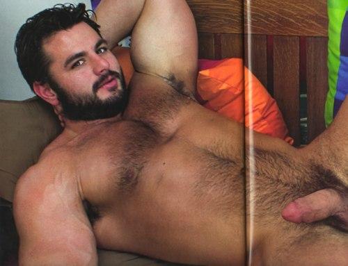 Gay peludo ursos gozando