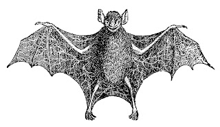 bat scary halloween image illustration