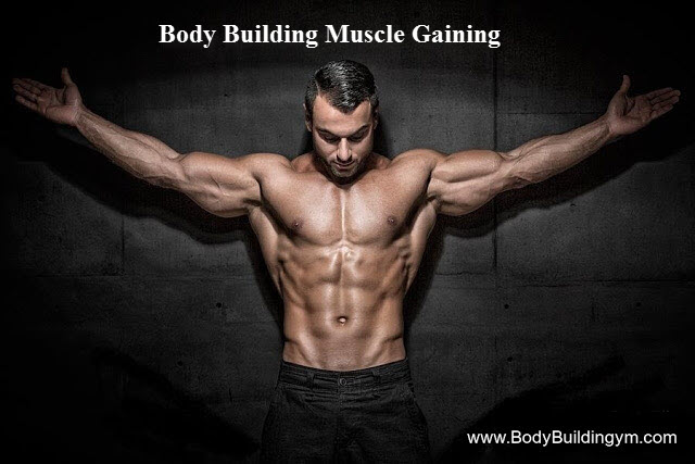 Muscle Gaining