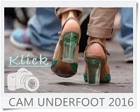 http://vonollsabissl.blogspot.de/2016/11/47-cam-underfoot.html