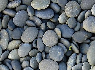 Cool Rock Craft Ideas For Th Graders