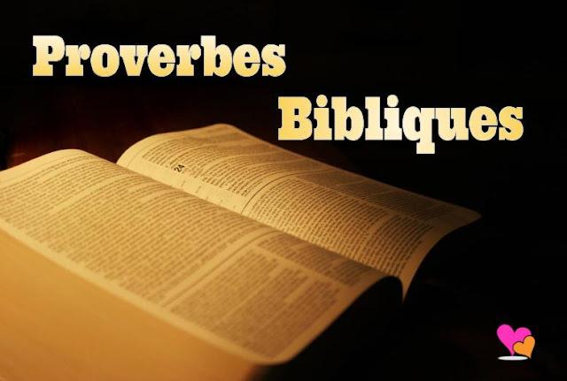 Tous les proverbes de la Bible