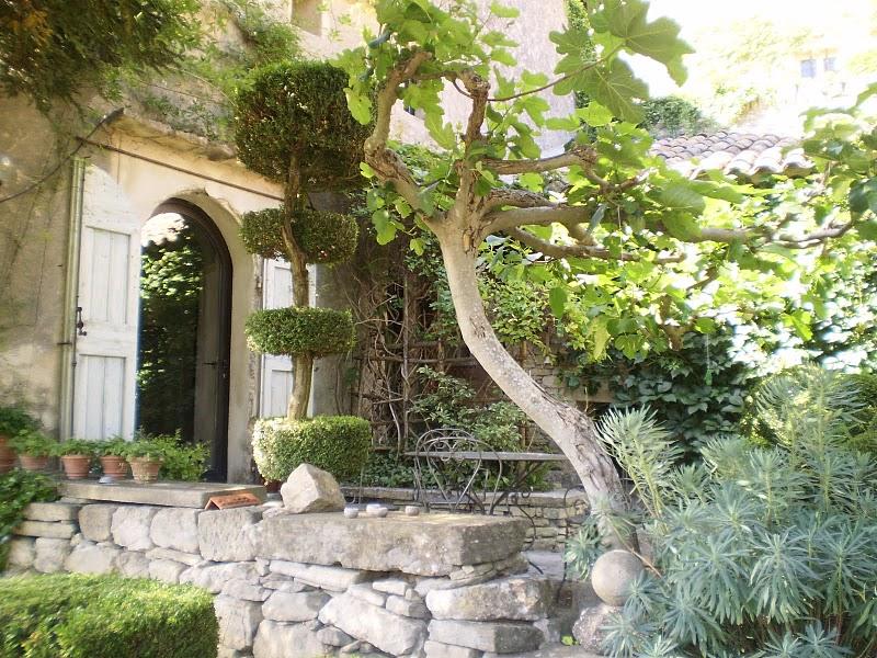 Jardin La Louve Bonnieux Vaucluse 9th June 2017