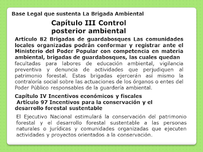 Base legal que sustenta la Brigada Ambiental capituloIII