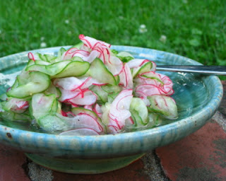 Cucumbers & Radishes in Vinegar