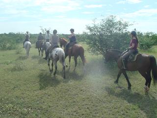ratsastussafari, mashatu, botswana, riitta reissaa