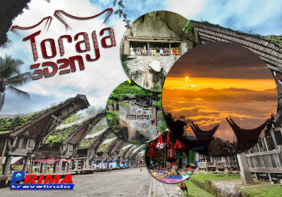 paket tour toraja 3 day 2 night