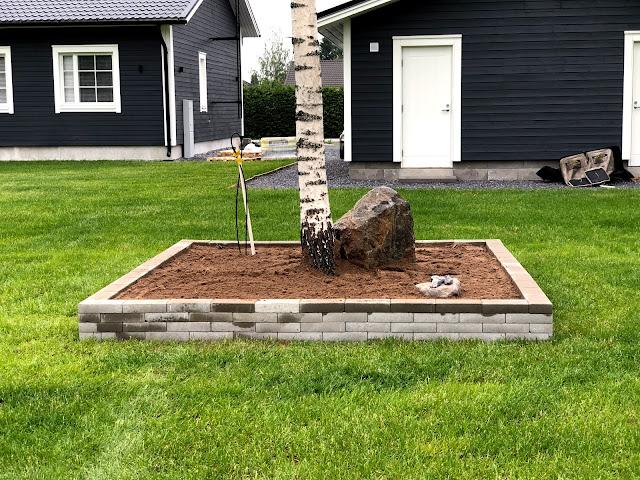 istutusallas, istutusaltaan teko, kukkapenkki, kukkapenkki koivun ympärille, pohjatyöt, pihatyöt, puutarha, istuttaminen, siirtonurmi, harmaa talo