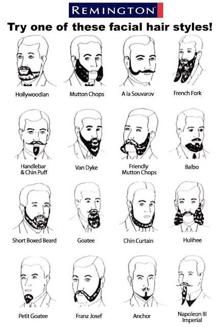 Beards!: A Shaver's Guide to facial Hair Styles