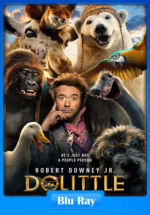 Dolittle 2020 Dual Audio Hindi 720p BluRay ESub x264 | 300MB 480p | 100MB HEVC