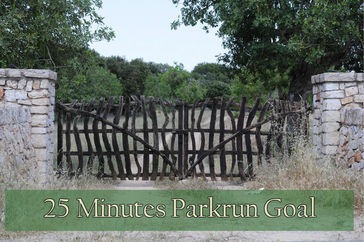 25 Minutes Parkrun Goal