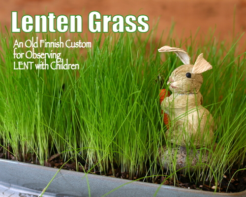 Lenten Grass ♥ KitchenParade.com, an old Finnish tradition, good way to mark the season of Lent with children.