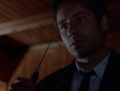 The X-Files, 3x24