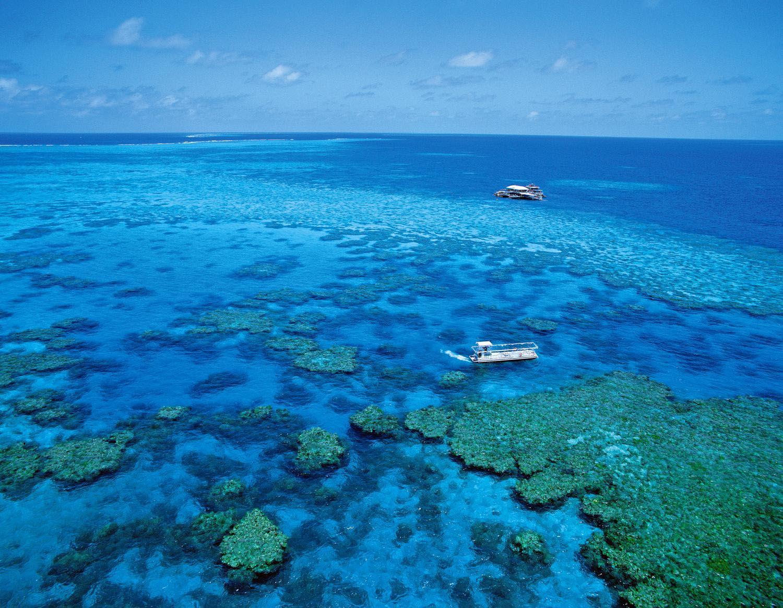 Great barrier reef desktop wallpapers - Great barrier reef desktop background ...