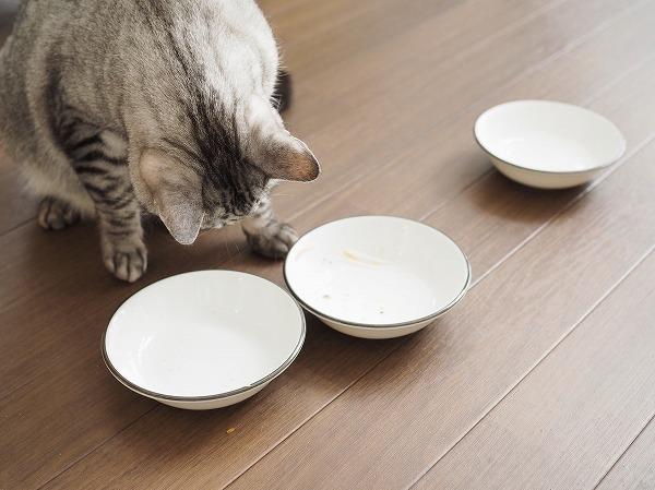 きれいになった3つのお皿