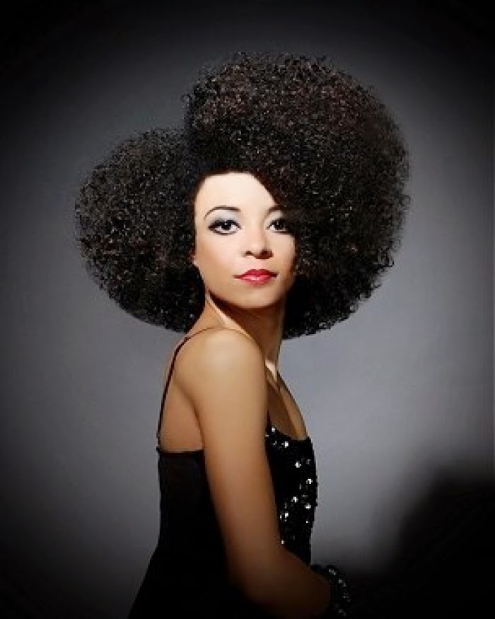 styling ethnic hair 6 amazing afro hairstyles 3672