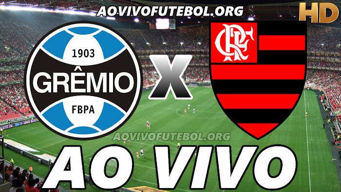 Assistir Grêmio x Flamengo Ao Vivo Online Grátis