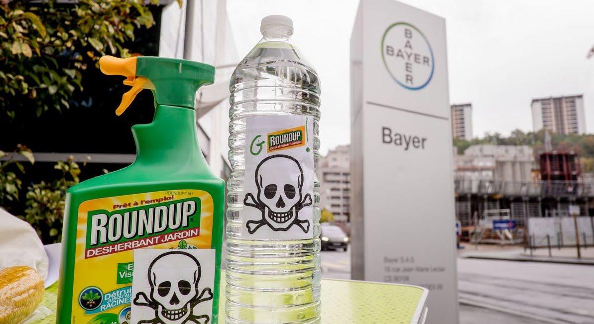 Il glifosato dell'erbicida Roundup di Bayer-Monsanto causa il cancro, maxi risarcimento.