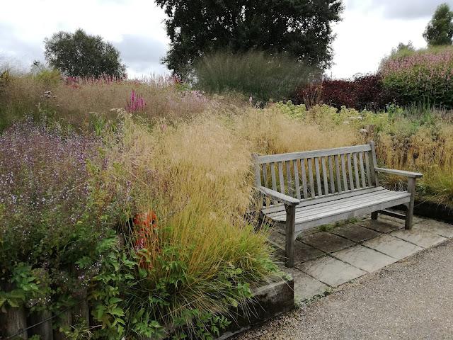 drewniana angielska ławka, ogród traw