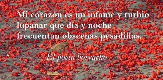 sobre un suelo rojo de flores de kurrajong se lee la frase de un poema de Laforgue Mi Corazón es un oscuro y turbio lupanar que día y noche frecuentan obscenas pesadillas