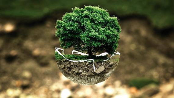 melestarikan lingkungan