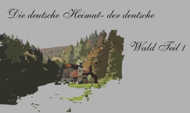 Wald mit Dorf