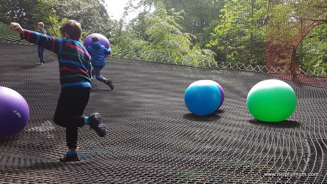Treetop nets balls