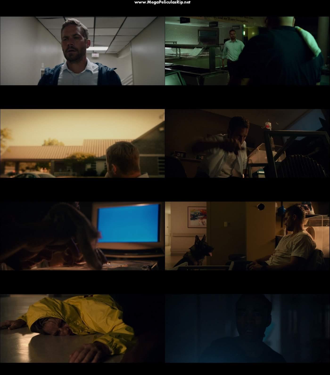 Horas desesperadas 1080p Latino