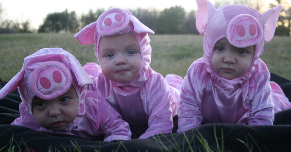 Download three buns: Bat Meets the Three Little Pigs