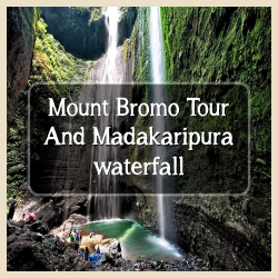 Bromo tour and Madakaripura
