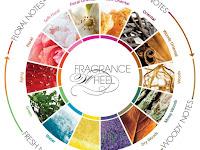 Mengenal Istilah Keluarga Parfum, Fragrance Family, Fragrance Wheel
