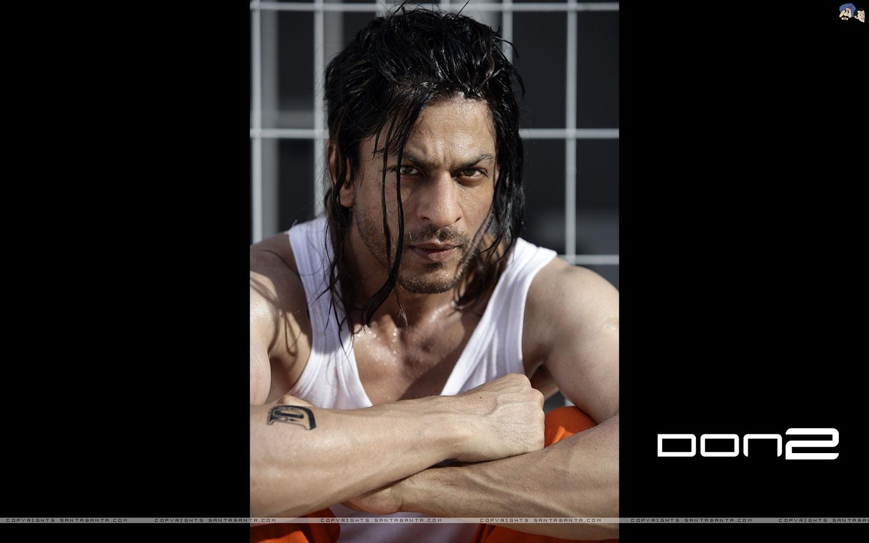 Shahrukh Khan Live Wallpaper: Video Collection Data Base: DON