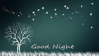 Good Night Nature Image
