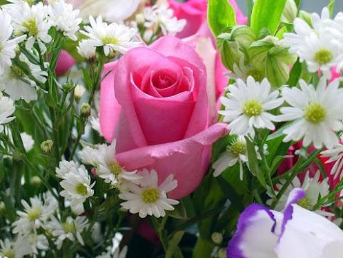 névnapi képek mária napra Legyen szép a mai napod is!: Mária napi köszöntő névnapi képek mária napra