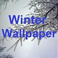 Wallpaper 'Winter'