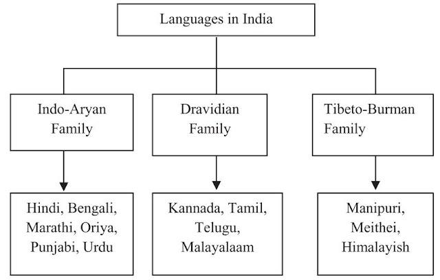 হিন্দি ভাষা কেন জনপ্রিয়?