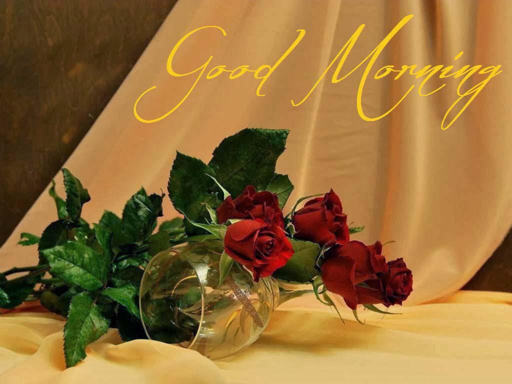 Allfreshwallpaper: Lovely And Beautiful Good Morning
