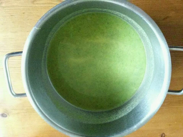 Foraged Wild Food - Nettle Soup
