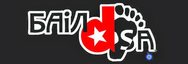 BAILDSA_band logo
