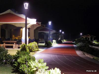 海岸遊歩道の夜景