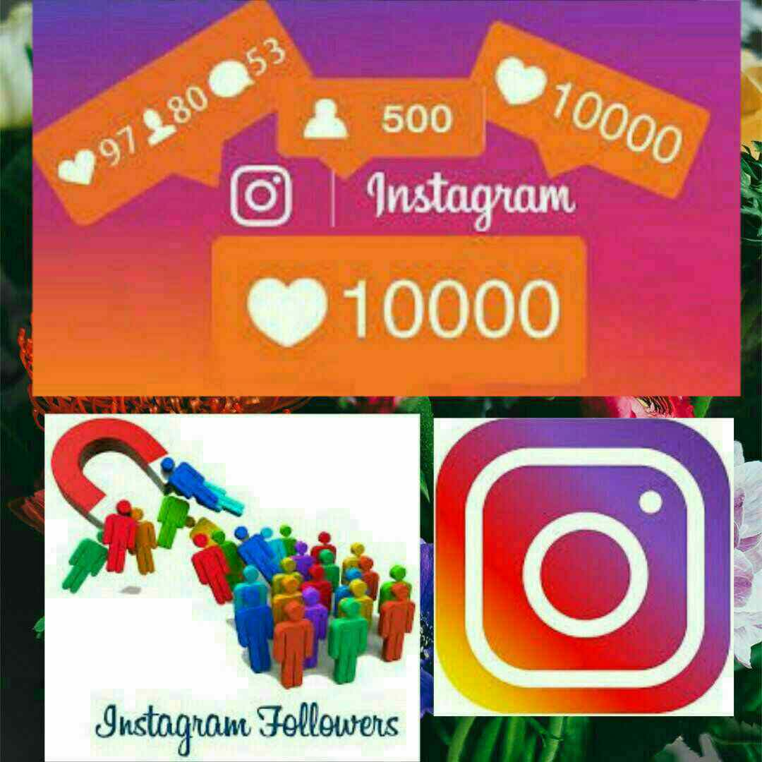 how to start a new instagram and get followers