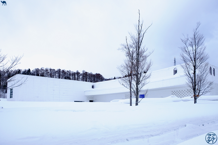 Le Chameau Bleu - Aomori Museum of Art - Shin Aomori - Tohoku Japon