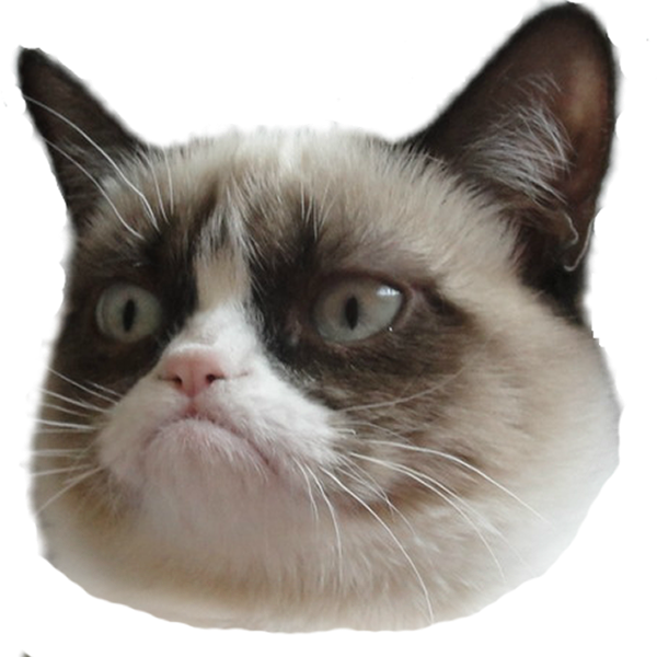 grumpy cat edtech edtechteacher edtechchris.com